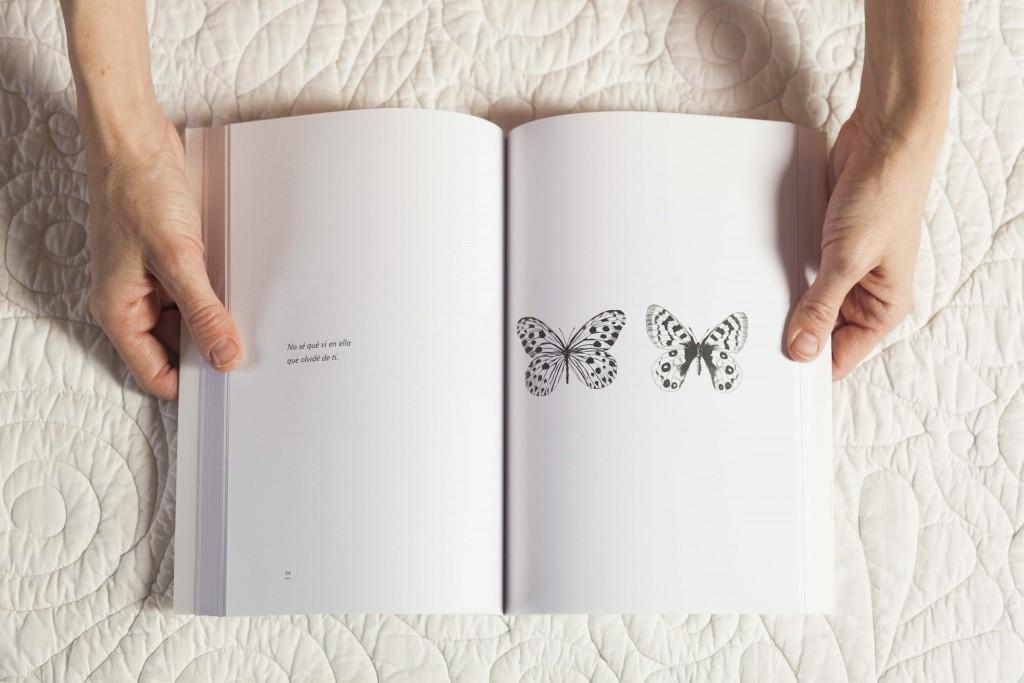 libromonstruocorazones26